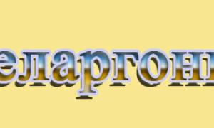 Пеларгония elspeth