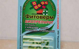 Как применять фитоверм