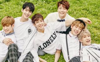Группа астра корейская