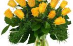Мелкие желтые цветы