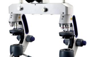 Сравнительные микроскопы и их особенности