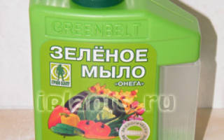Зеленое мыло от белокрылки