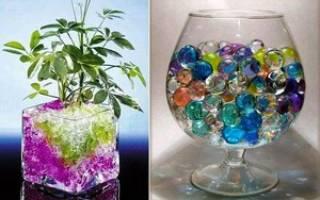 Шарики для полива комнатных растений