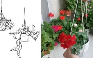 Подвесное кашпо своими руками для комнатных цветов