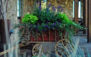 Кашпо для комнатных цветов своими руками