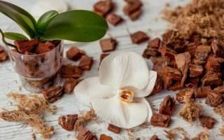 Как подготовить кору для орхидей самостоятельно
