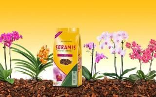 Серамис грунт для орхидей