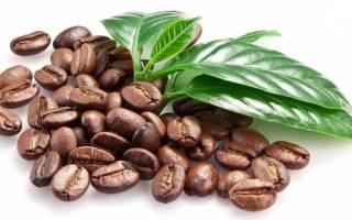 Болезни кофейного дерева