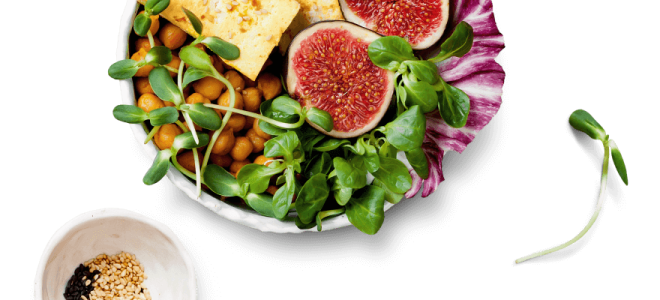 Здоровое питание без мяса: кому подходит и как начать