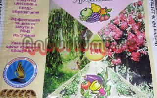 Циркон для комнатных растений