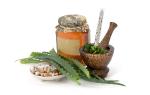 Алоэ лечебные свойства и противопоказания