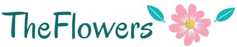 TheFlowers – все про цветы